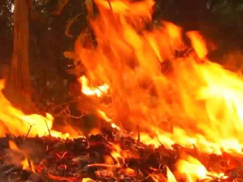 Incendio en campamento de Carolina del Norte