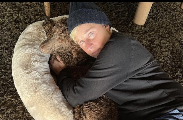 Ellen DeGeneres compartió uno de sus síntomas de COVID-19 ¡Es malo!