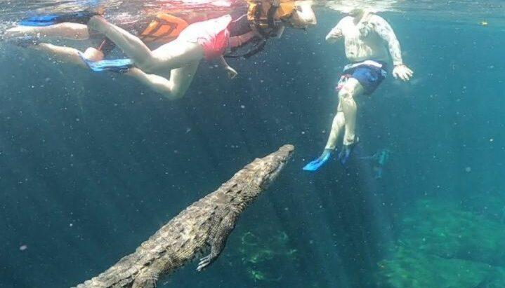 cenote cocodrilo Tulum