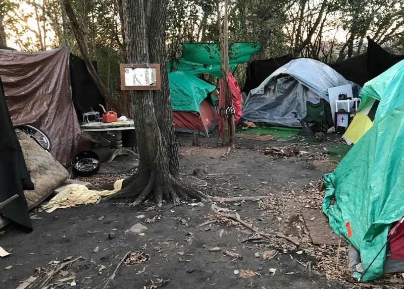campamento-de-personas-sin-hogar-ratas-falta-de-transporte-y-descoordinacion-dificultan-desalojo