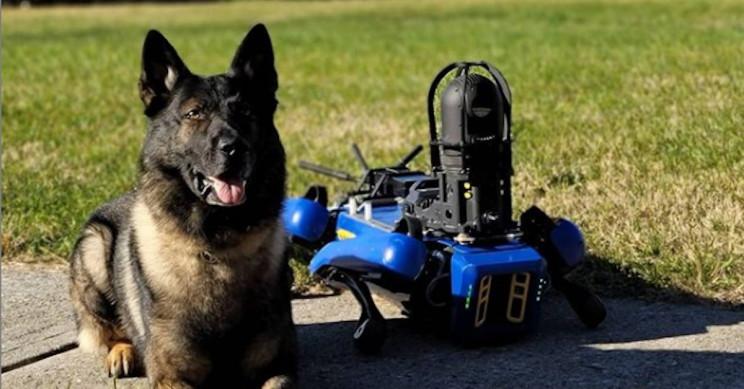 Digidog-perro-robot