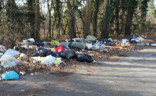 Hubo más de 1 millón de libras de basura recolectada en las carreteras de Carolina del Norte