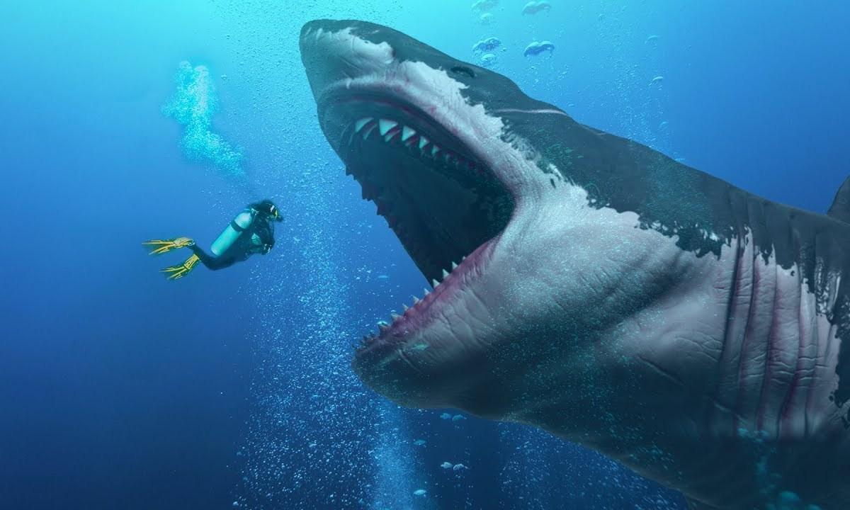 Magalodón-tiburón-gigante