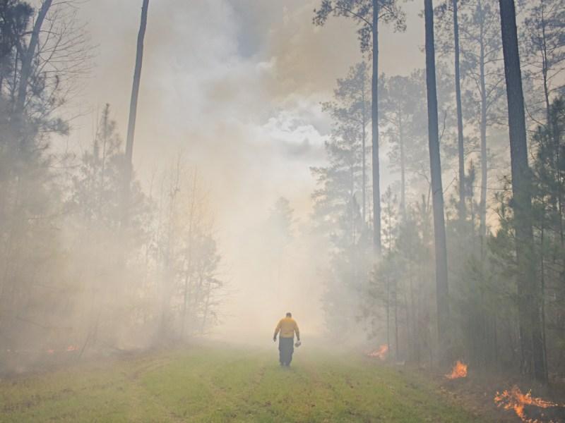 Incendios forestales en el oeste envían humo a Carolina del Norte