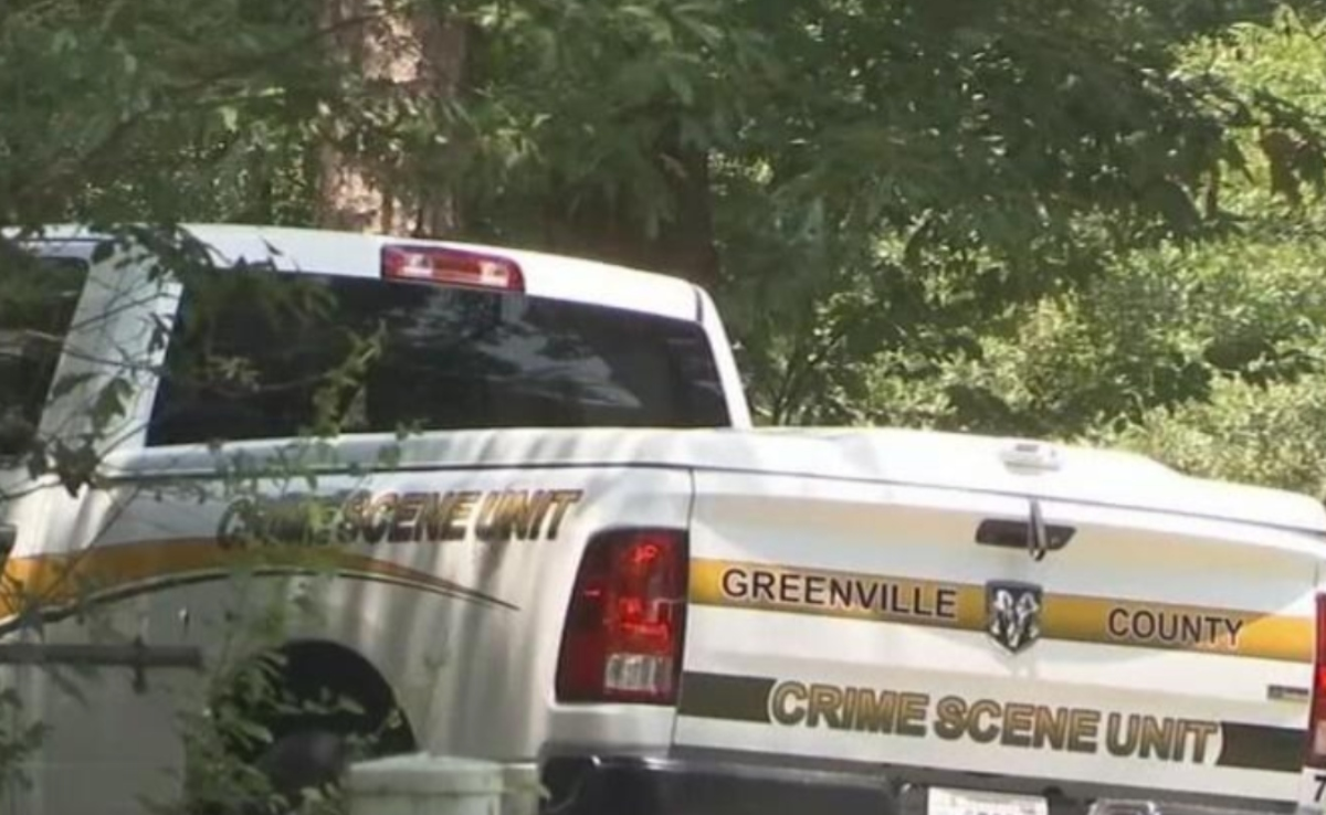 Greenville tiros
