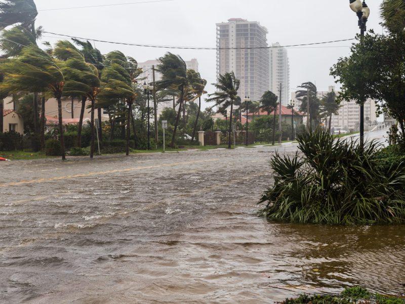 tormenta-tropical-fred-toco-tierra-en-florida-afectara-a-las-carolinas-alerta