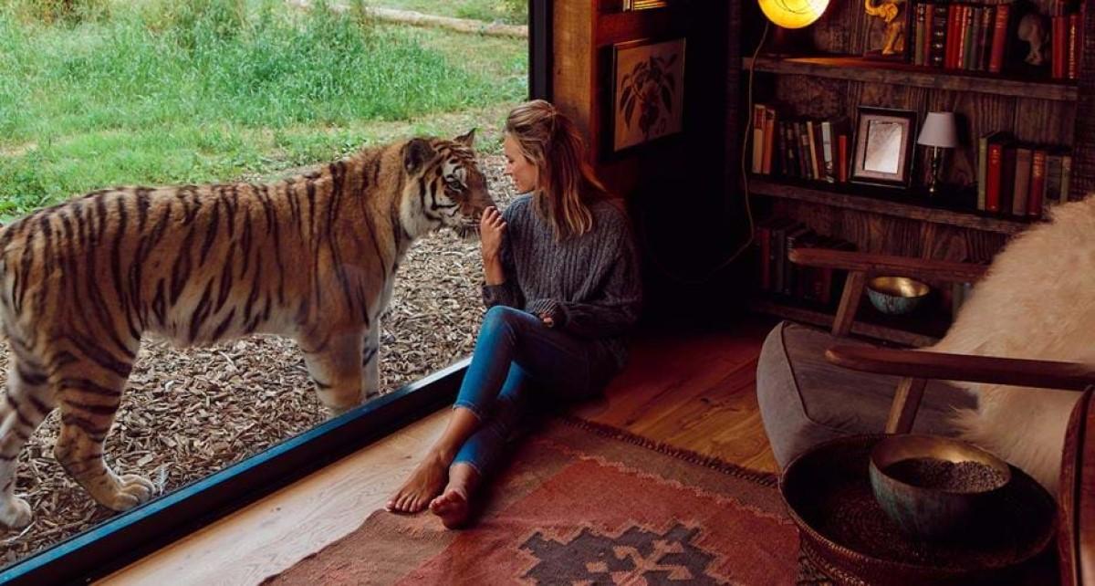 Tiger Lodge hotel Tigres