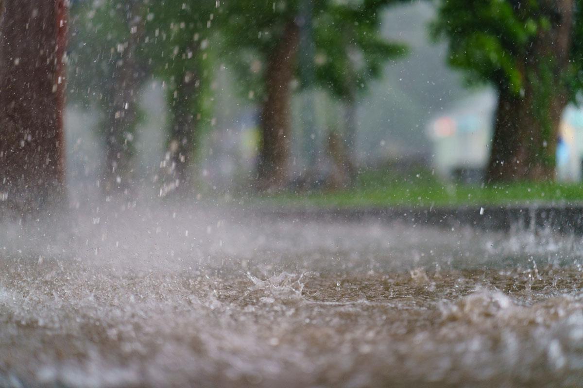 Tormenta tropical Mindy podría hacer llover en Carolina del Sur