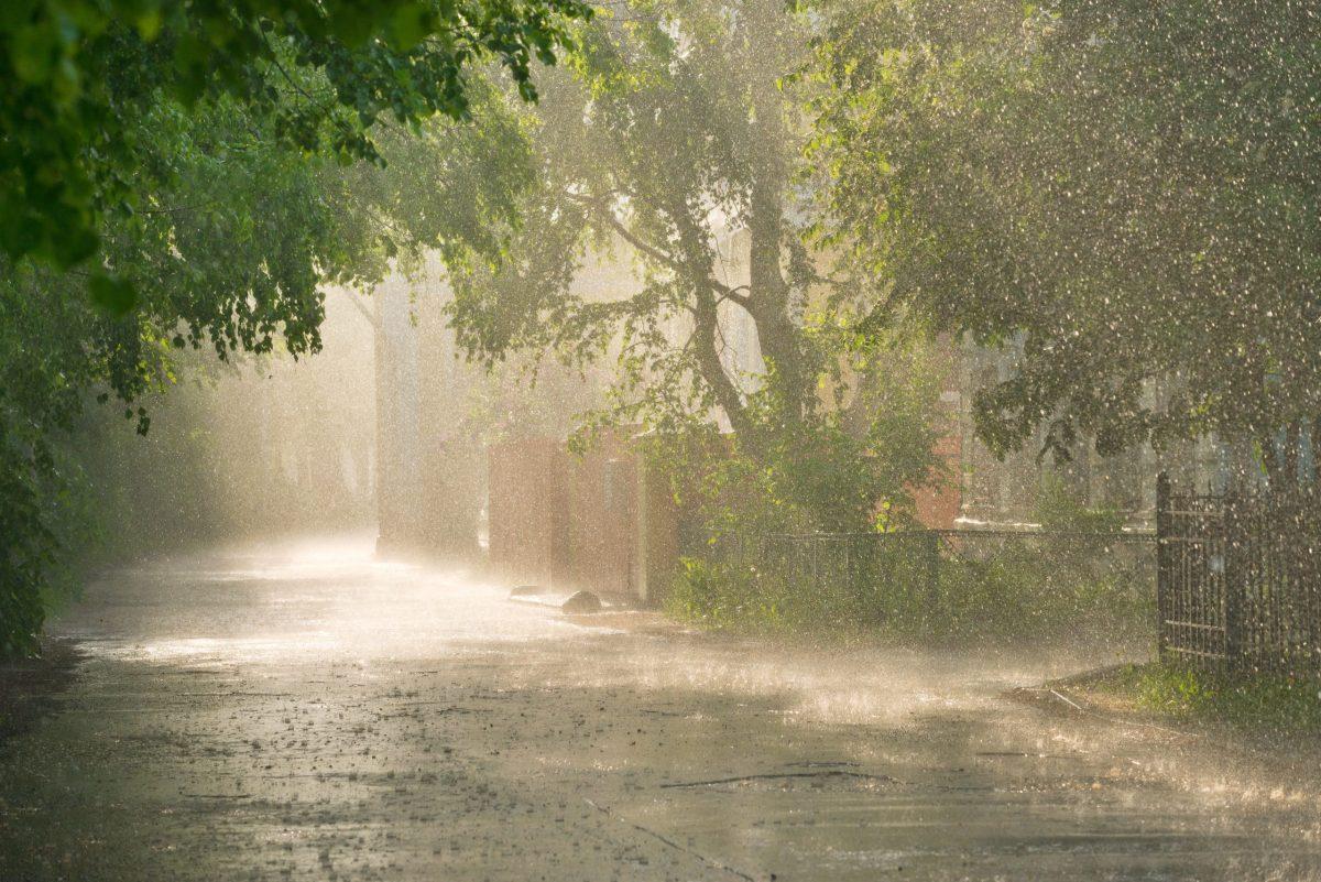carolina-del-norte-recibe-lluvias-por-depresion-mindy-y-huracan-larry