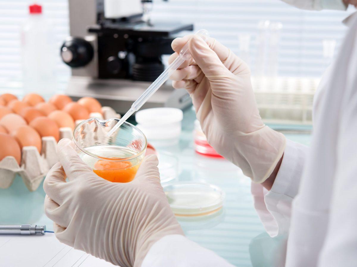 desconocen-causa-de-brote-de-salmonella-que-afecta-a-29-estados