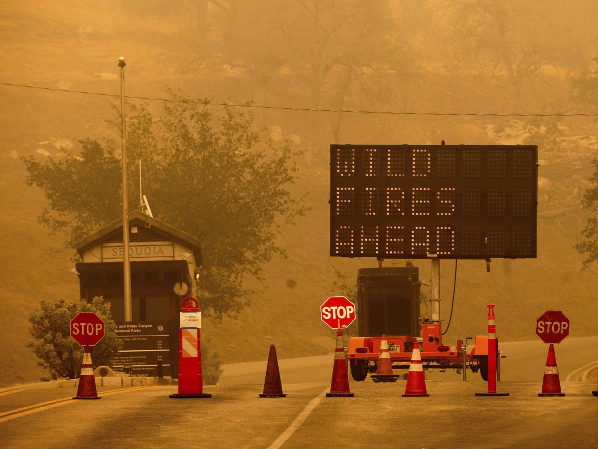 en-peligro-parque-nacional-de-secuoyas-en-california-por-incendio