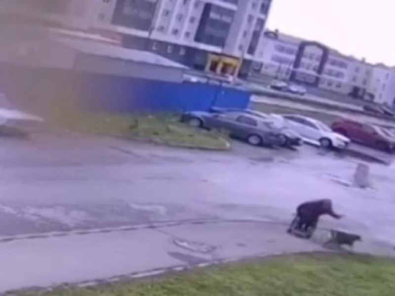 hombre silla ruedas salva perrito