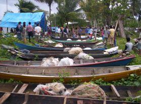 Bantuan sampan dan alat tangkap korban Tsunami