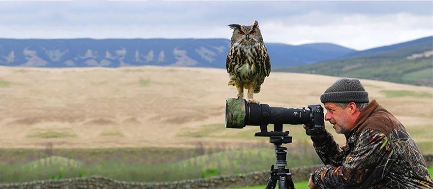 wildlifetours