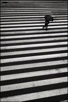 hombre-con-paraguas-cruza-paso-de-cebra-001