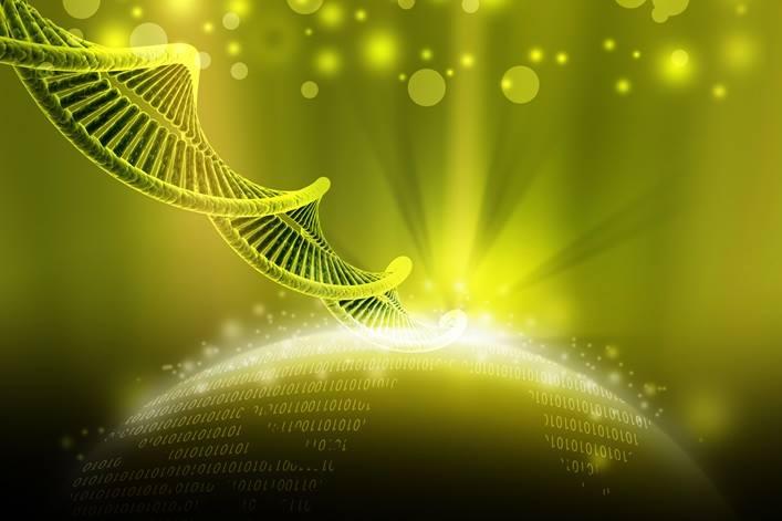 L'attivazione dei 12 strati del DNA per entrare a far parte della Nuova Umanità