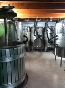 Vega Volcan fermentation room