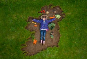 Energia Get Ireland Growing Fund calling on Laois for Applications