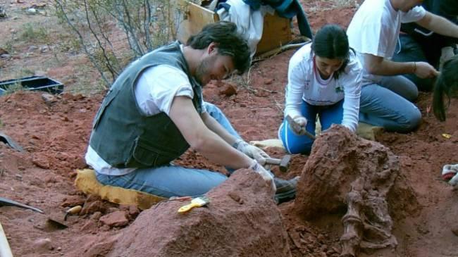 Identifican al dinosaurio más antiguo del cretácico en la Patagonia argentina