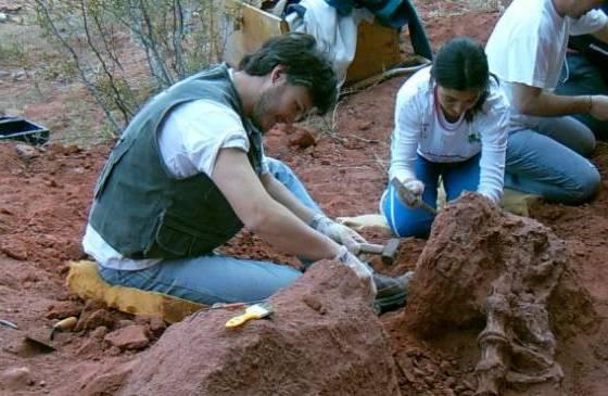 identifican-al-dinosaurio-mas-antiguo-del-cretacico-en-la-patagonia-argentina