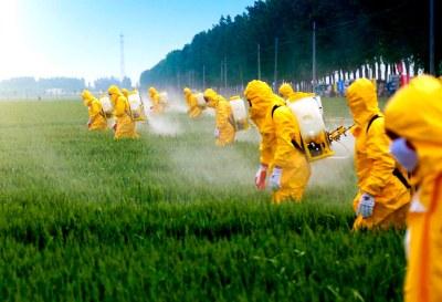 Latinoamérica, un continente infestado de agrotóxicos