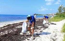 Celebra Solidaridad la semana del turismo con limpieza de playas