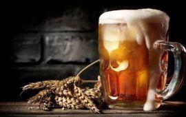 OTRO PRODUCTO TURÍSTICO | Lanzan la Ruta de la Cerveza Artesanal de QR