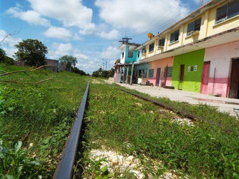 Privilegiará Tren Maya a proveedores locales
