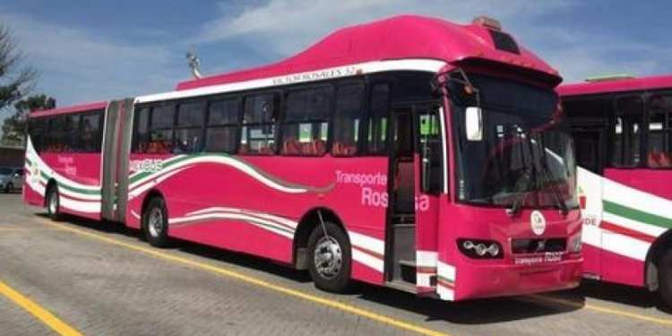 transporte rosa