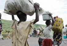 Desplazados forzados