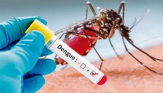 Dengue en Polonuevo