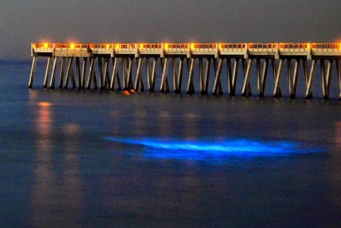 6 Fenomena Unik Air Bersinar Saat Kegelapan