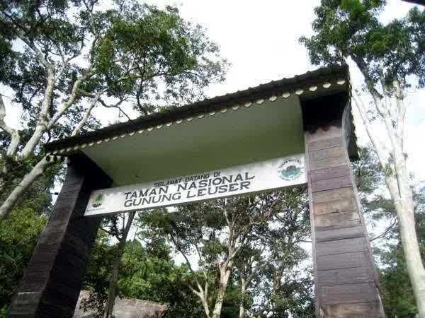 6 Taman Nasional Indonesia Yang Juga Situs Warisan Dunia