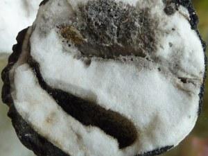 Lava El Hierro