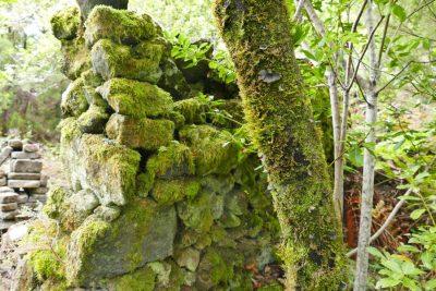 Mauer - Grotten