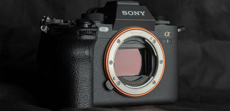 Sony A1, análisis: características, fotografías, precio