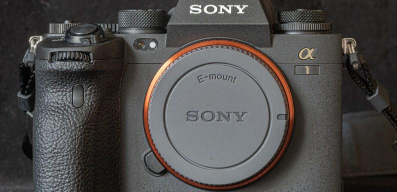 Sony A1, toma de contacto: una cámara profesional que vale por tres (en todos los sentidos)