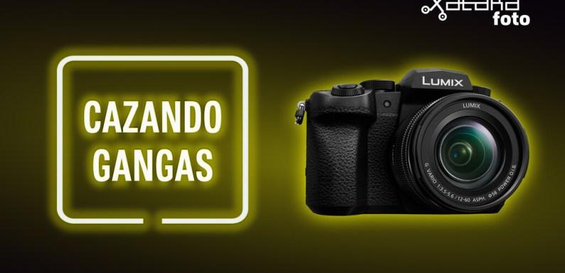 Panasonic Lumix G90, Sony A7R II, LG Velvet 5G y más cámaras, móviles, objetivos y accesorios al mejor precio en el Cazando Gangas