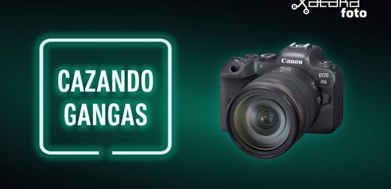 Canon EOS R6, POCO X3 Pro y más cámaras, móviles, ópticas y accesorios al mejor precio en el Cazando Gangas especial Día de la Madre