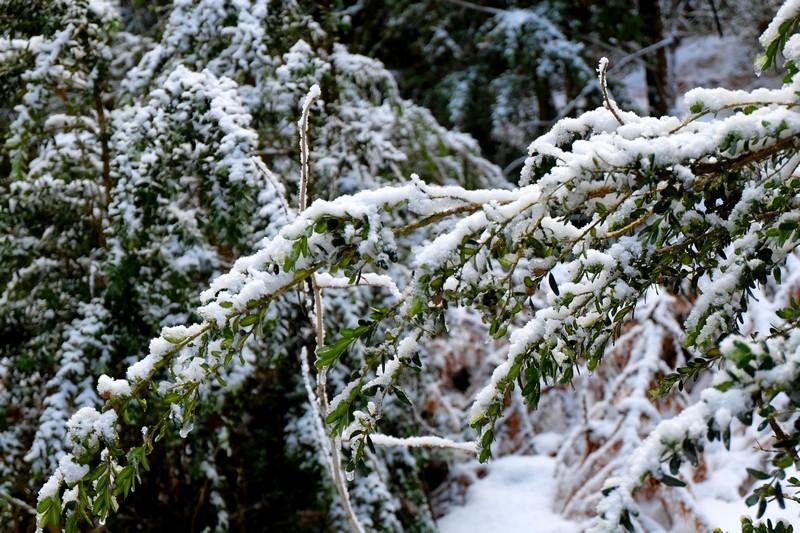 Neige à Beuil