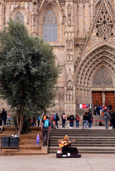 Musicien de rue devant la Cathédrale Sainte-Crroix