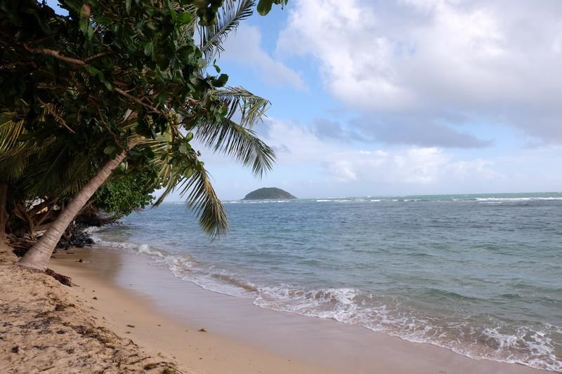 Plage de Cosmy en Martinique