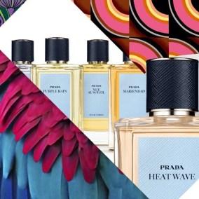 La superbe collection privée Olfactories de Prada, une collection de parfums souscotés.