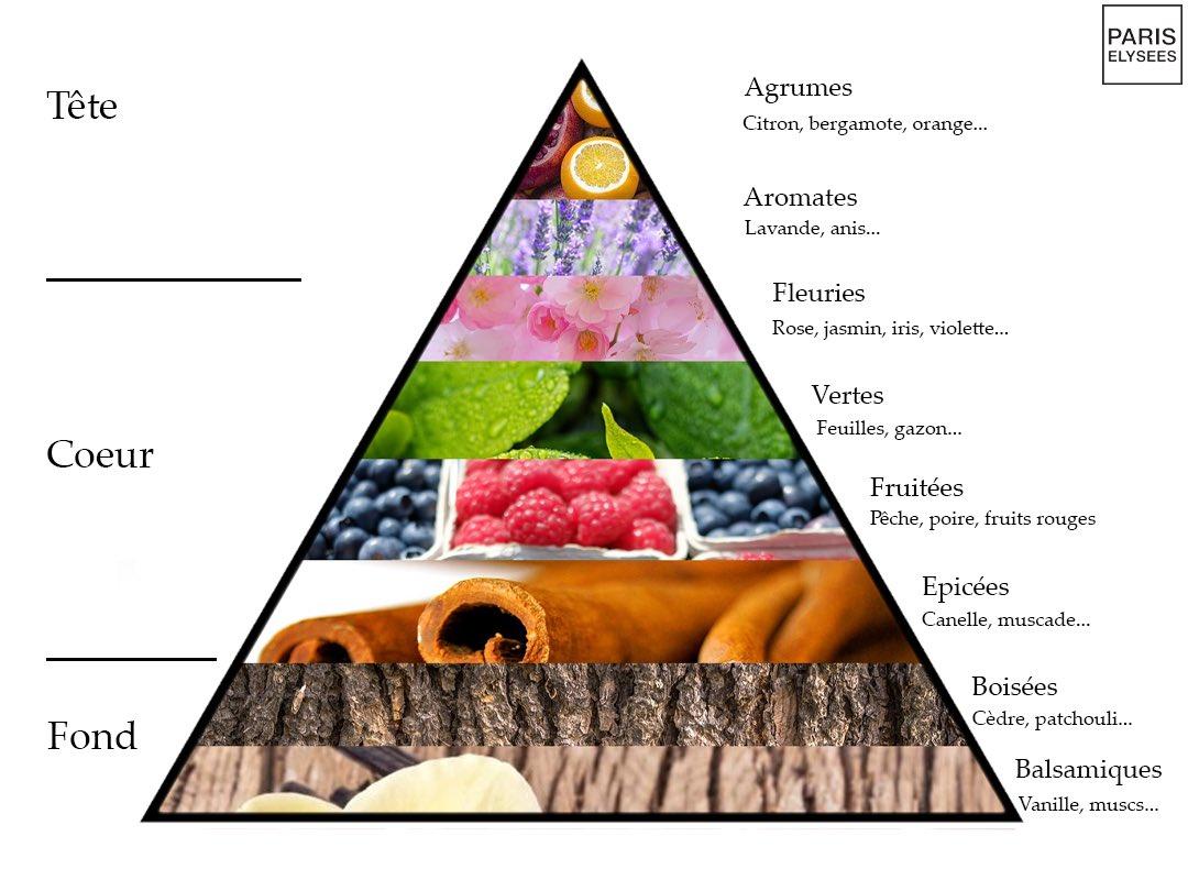 Les pyramides olfactives indiquées par les marques de parfum aident à progresser dans le parfum. Photo : https://twitter.com/paris__elysees/status/1219909610494144512
