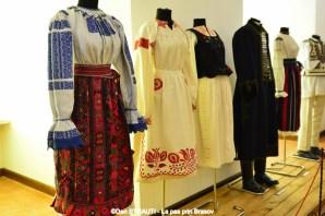Muzeul_Tarii_Fagarasului_2016 (2) (Copy)