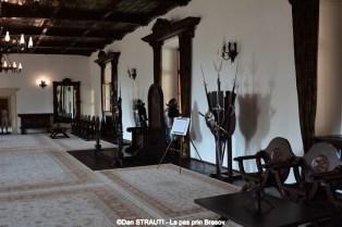 Muzeul_Tarii_Fagarasului_2016 (5) (Copy)