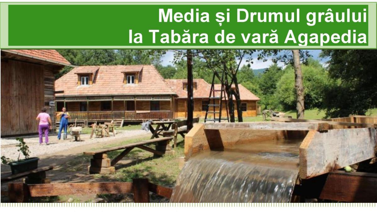 Tabăra de vară 'Media și Drumul grâului'