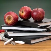 A fost lansat apelul de selecție în vederea constituirii Corpului de profesori evaluatori pentru examenele și concursurile naționale (CPEECN)