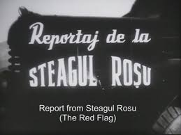 Kinedok 2021_Repo Steagu Rosu