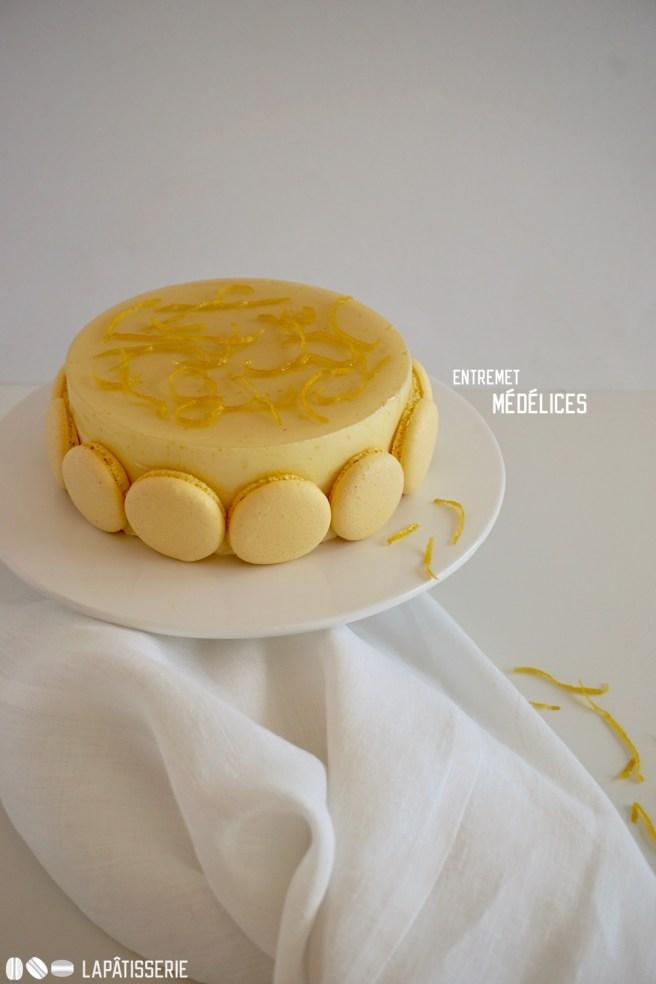 Ein feines Entremet mit Zitrone, Kern aus Haselnuss mit Knusper und zarten Macaronschalen.